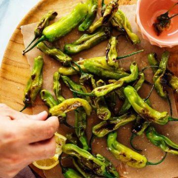 Charred Shishito Peppers Recipe
